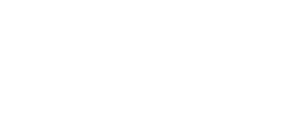 salted vines vineyard and winery logo